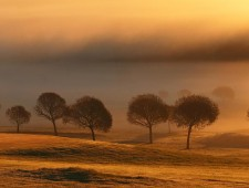 PSA Honorable Mention - Jussi Helimaki (Finland)  - Early misty morning 2