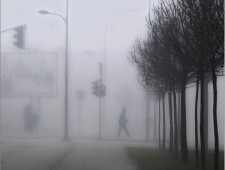 UPI Gold Medal - Dragan Prole (Bosnia And Herzegovina)  - Red light in the fog